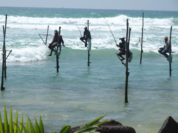 Des pêcheurs... de touristes !